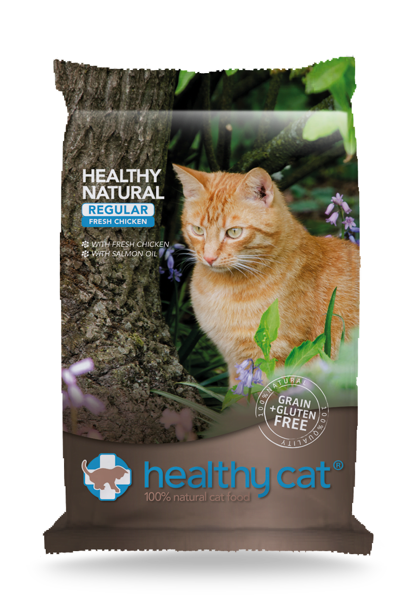 Healthy Cat Regular Chicken
